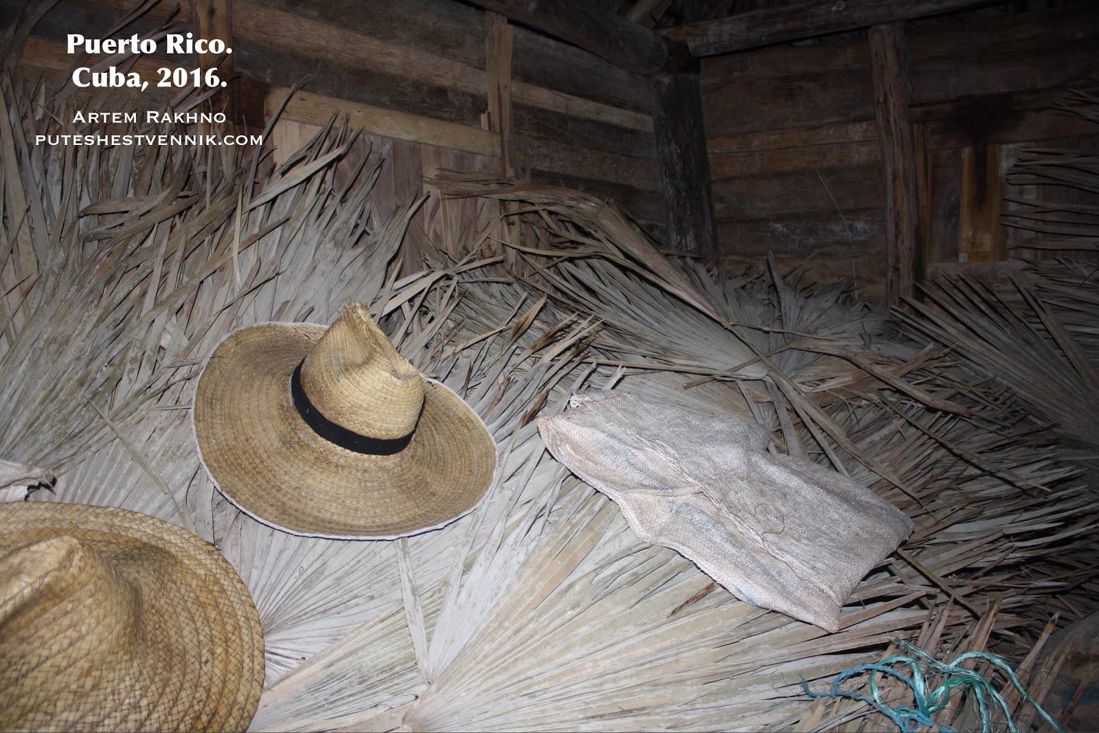 Соломенные шляпы и пальмовые листья