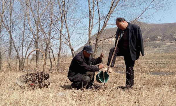 obr6 - Jak slepý s bezrukým společně zasadili les