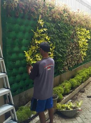 Jasa Pembuat Taman Vertikal Garden