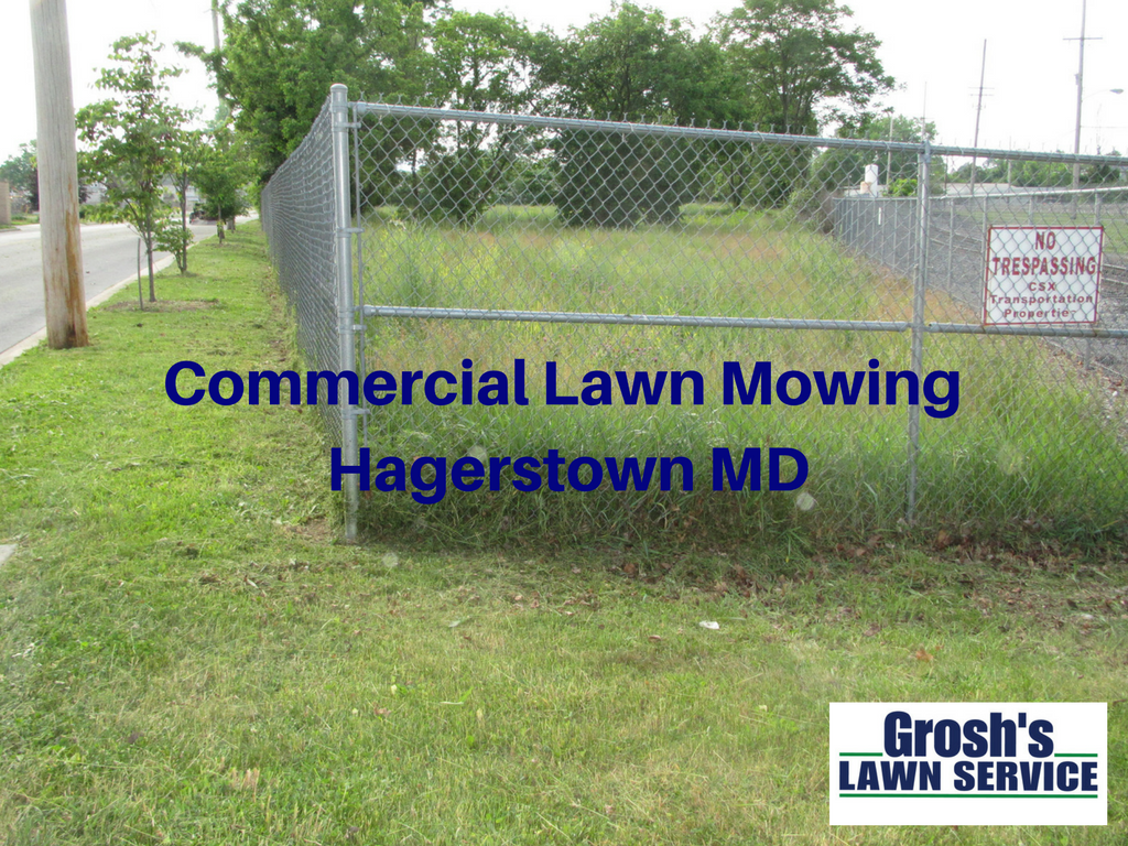 Groshs lawn service commercial lawn care mowing service for Commercial lawn maintenance