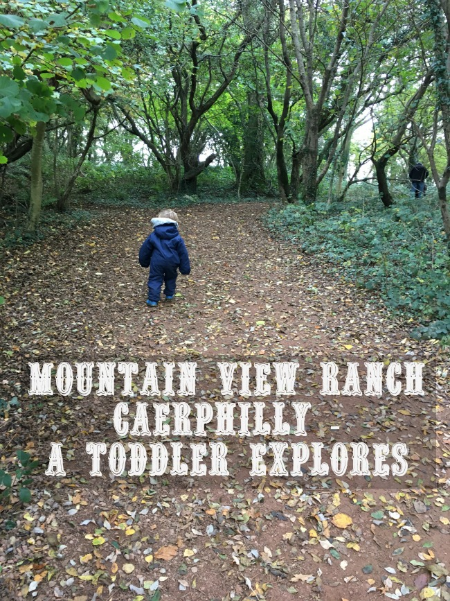 Mountain-View-Ranch-A-Toddler-Explores-text-over-image-of-toddler-walking-along-a-path