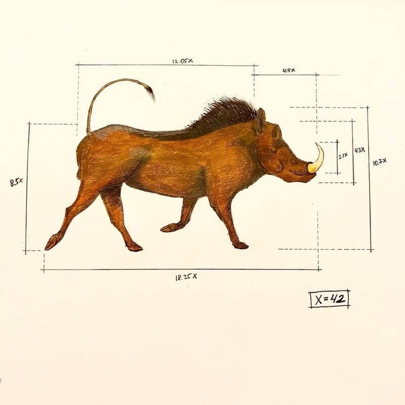 04-Wild-Boar-Ran-Shapira-Animal-Drawings-from-a-Sculptor-s-Perspective-www-designstack-co