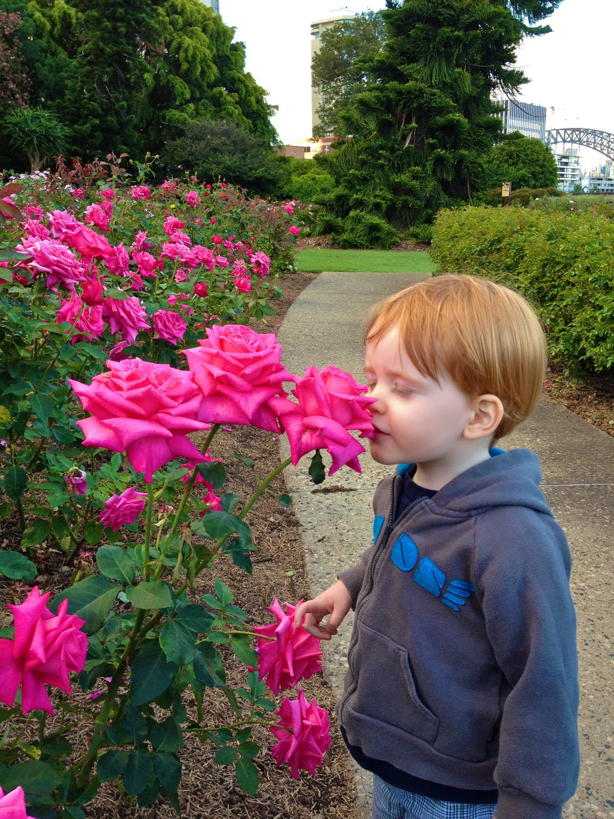 Stop And Smell The Roses Daily Vowel Movements