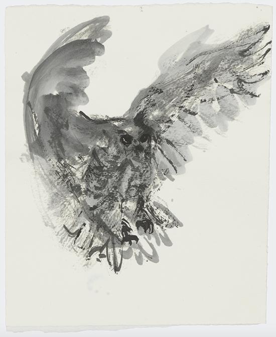 drawing Marlene Dumas The owl, 2015-2016