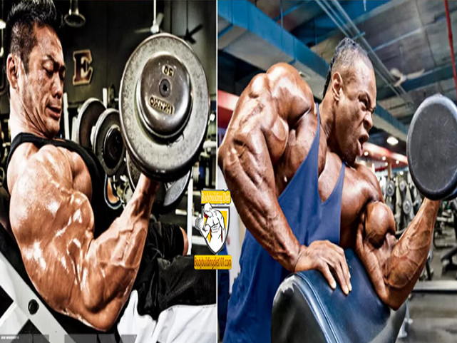 The 9 Best Biceps Exercises At home For Men