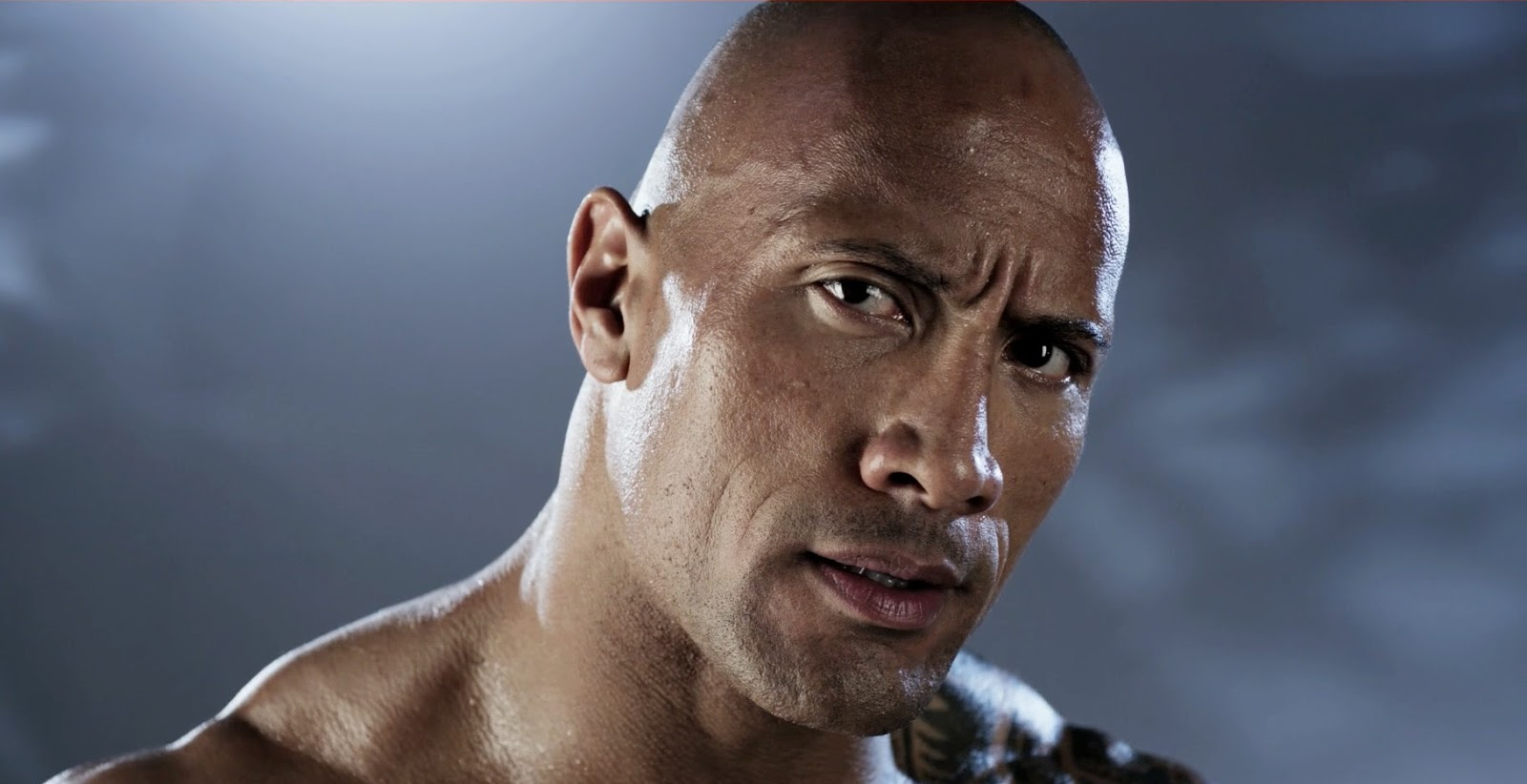 Video games: WWE 2K14 cover art featuring The Rock - PS3 X360