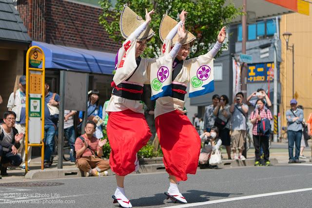 江戸っ子連、女踊り、マロニエ祭り流し踊り中の演舞の写真 その3