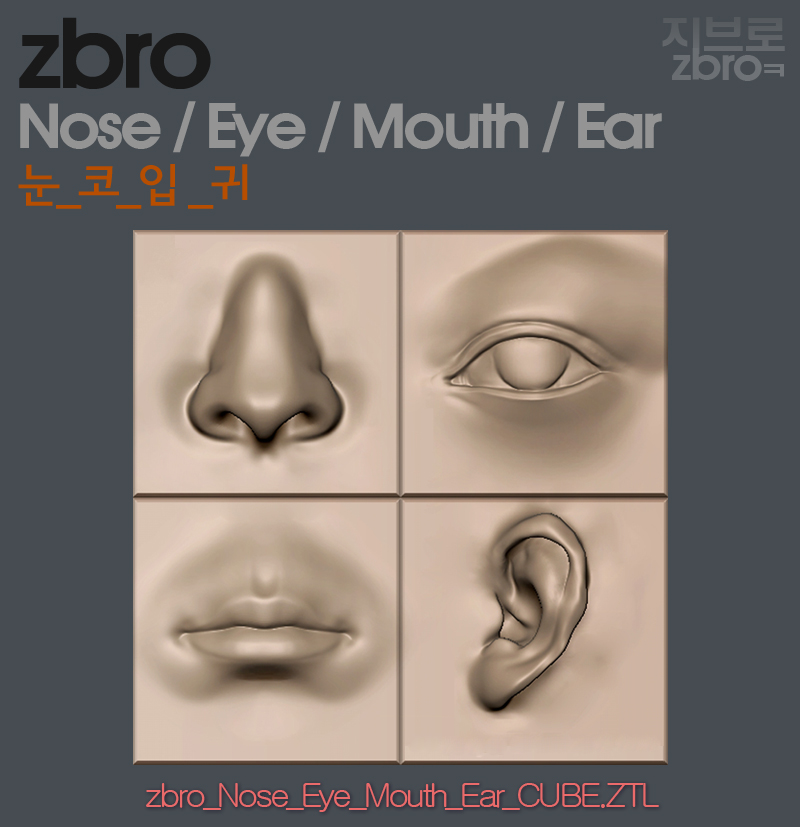 daily sculpt & WIP: ZBrush Nose / Mouth / Eye / Ear Data(ztl)