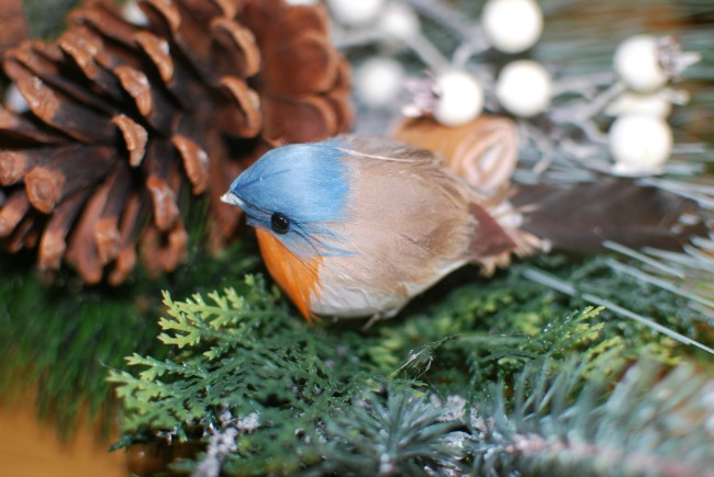 Amara-traditional-Christmas-wreath-close-up-detail-of-robin-with-a-blue-head-and-red-breast