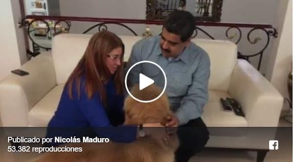 El Perro de Maduro llegó de la Peluquería y la perra de Cilia lo recibe