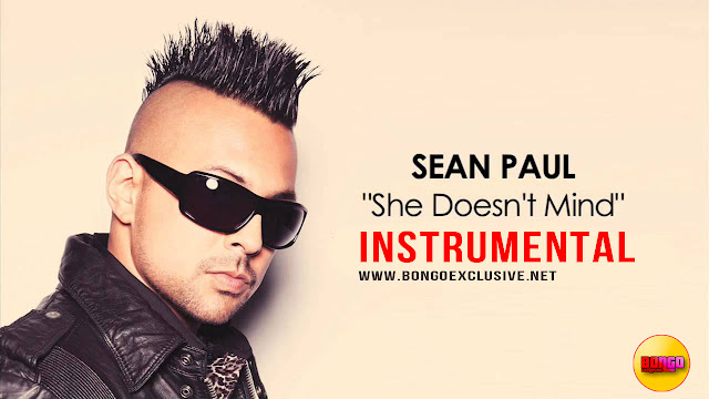 Sean Paul - She Doesn't Mind (Instrumental)