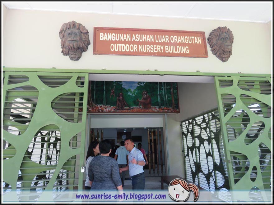 Sepilok Orang Utan Rehabilitation Centre @ Sandakan, Sabah