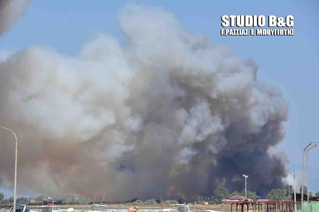 Μεγάλη πυρκαγιά στο Ναύπλιο (βίντεο)
