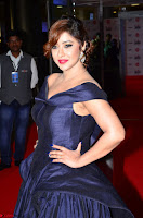 Payal Ghosh aka Harika in Dark Blue Deep Neck Sleeveless Gown at 64th Jio Filmfare Awards South 2017 ~  Exclusive 036.JPG