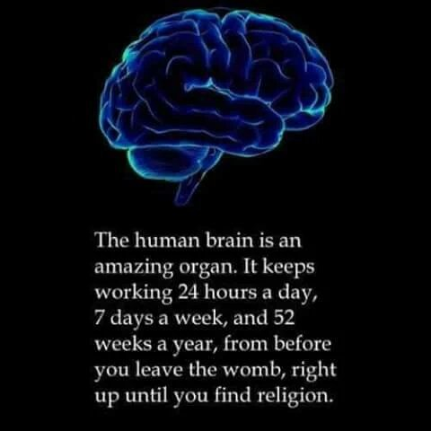 Funny Human Brain Quote Picture