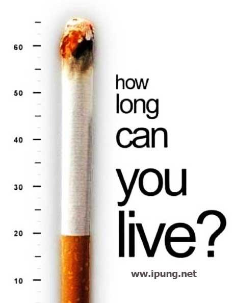 Perempuan Dukung Rokok Harus Mahal ! Setuju ! Kami Dukung