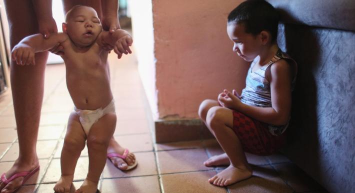 Penemuan Virus Zika di Jambi lantaran Wabah Demam Berdarah