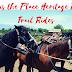 Opportunity 1: SPRING Horseback Riding