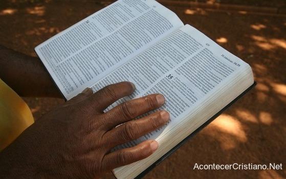 La política y la Biblia