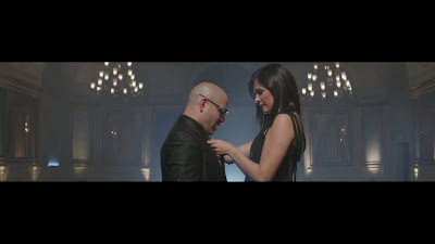 pitbull and nayer relationship