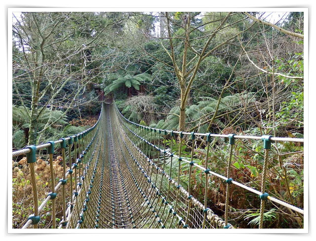 Rope Bridge in the jungle at Lost Gardens of Heligan, Cornwall