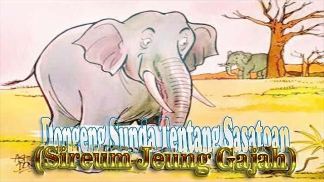 Contoh Dongeng Sunda Tentang Sasatoan (Sireum Jeung Gajah)