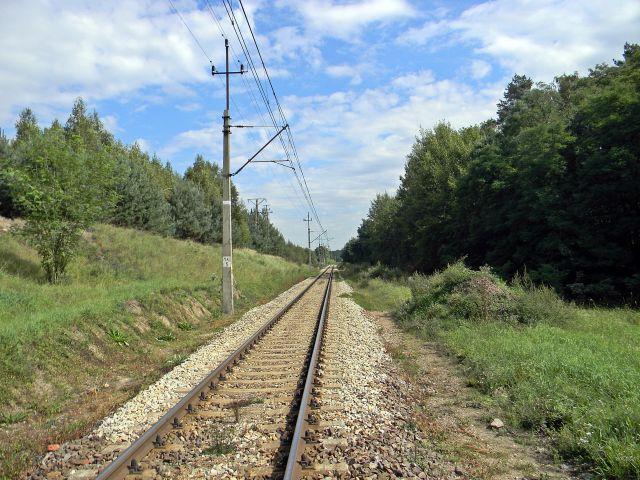 tory, szyny, pociąg