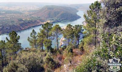 Vistas desde el castillo de Wamba