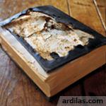 Tips Cara Menyimpan & Menjaga Buku Aman Dari Rayap