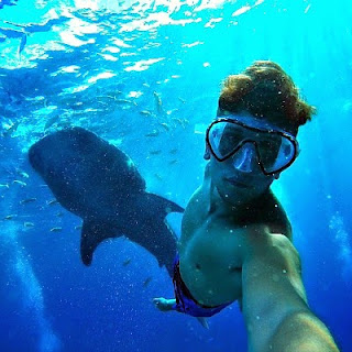 Christian Leblanc swimming with a bunch of huge great white sharks and taking an underwater selfie with them during his tour to Asia via geniushowto.blogspot.com the elephant clicked a selfie