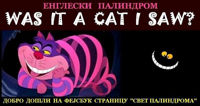 Was it a cat I saw?