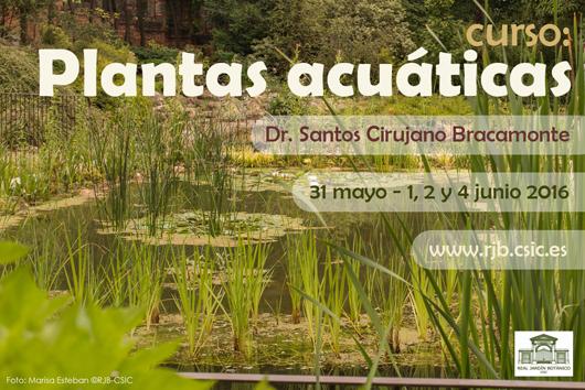 Blog sobre el parque nacional tablas de daimiel el real for Jardin botanico cursos