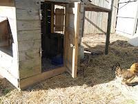 house for backyard hens