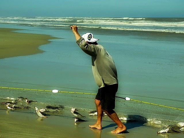 Retirada da rede de pesca, em Tavares