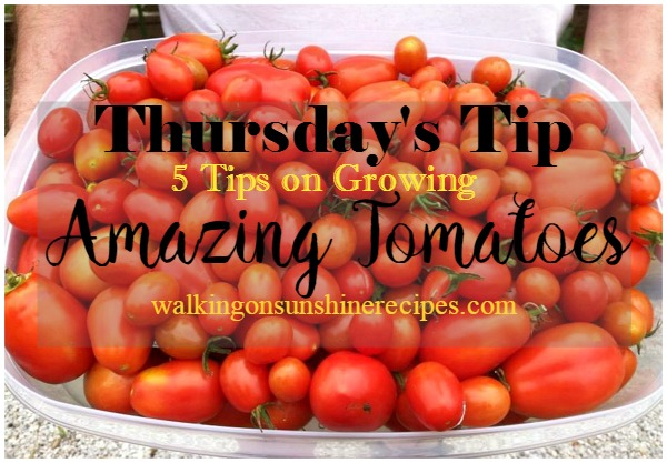 5 Tips on How to Grow Amazing Tomatoes is this week's Thursday's Tip from Walking on Sunshine Recipes.