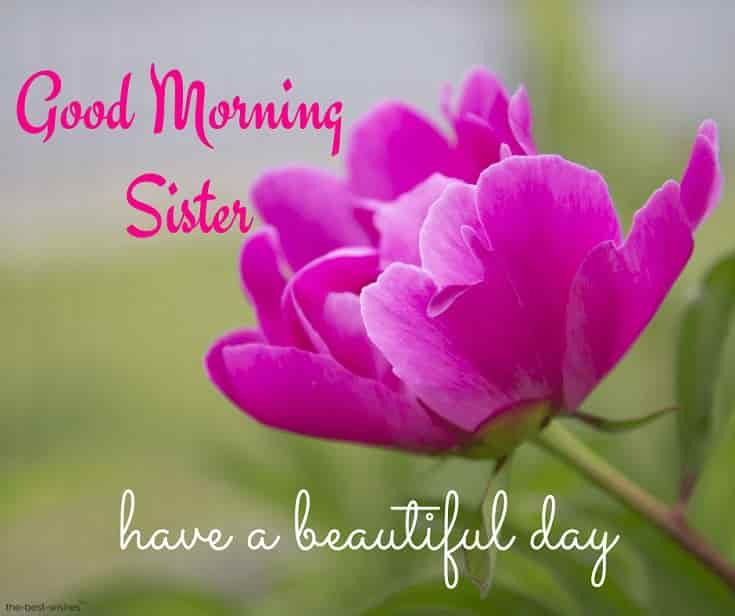 gm sister have a beautiful day
