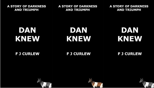 Review | Dan Knew by F J Curlew