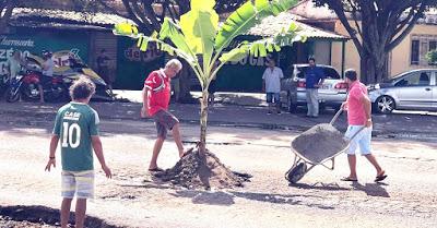Cansados de esperar, moradores de Tianguá tapam buracos com bananeiras