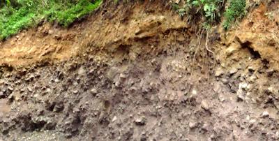 Klasifikasi Tanah di Indonesia
