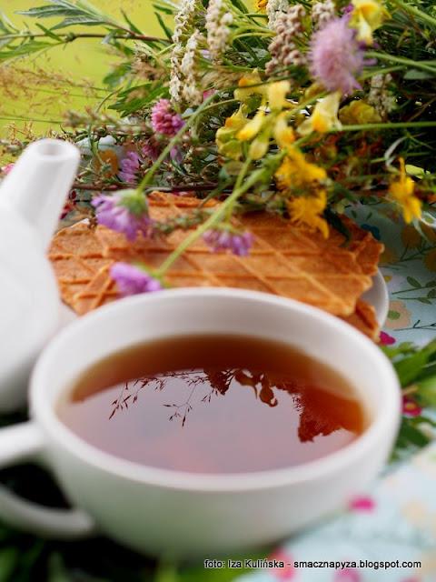 wierzbowka kiprzyca, ivan czaj, herbata rosyjska, ziola, herbatka ziolowa, przetwory, fermentacja, rosliny jadalne, laka