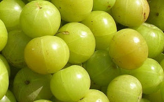 Health Benefits of Amla (Phyllanthus Amblica) - आँवला