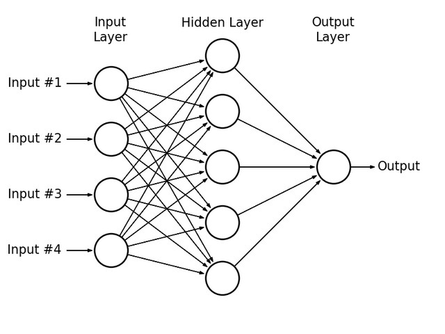 neural network with input layers and output layers in circles and arrows