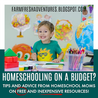 Homeschooling On A Budget: Tips and Advice
