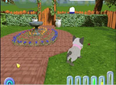 愛心寵物貓(Kitty Luv),可愛的全3D寵物養成!