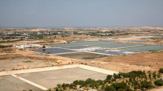 Israel planea destruir única fuente de agua de aldea palestina