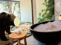 Guests in this Hotel Can Take a Bathroom with Bear and Eat with the Lion! Interested?