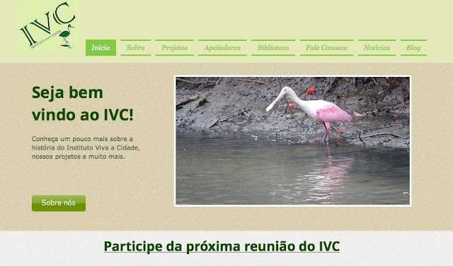 www.institutovivacidade.org.br