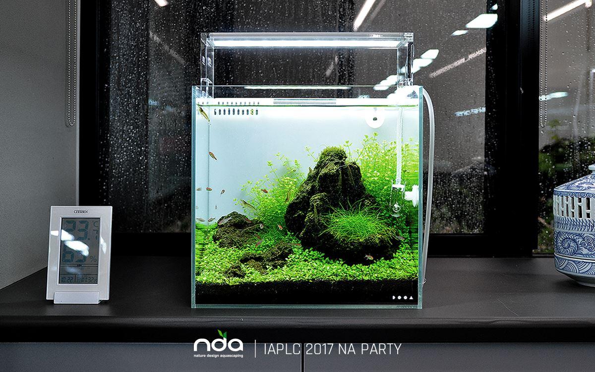 Lọc tràn trong được sử dụng cho một bể thủy sinh cubic