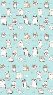 papel de parede gatinhos fofos