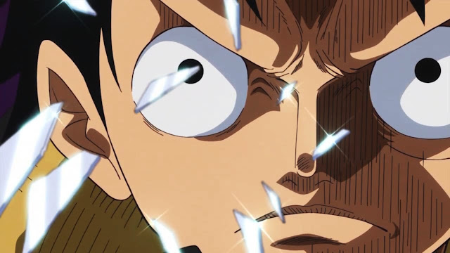One Piece Anime To Get A One-Hour Special Double Episode